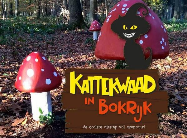 Kattekwaad in Bokrijk